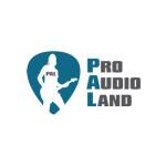 ProAudioLand SEO, PPC and Web Design Client